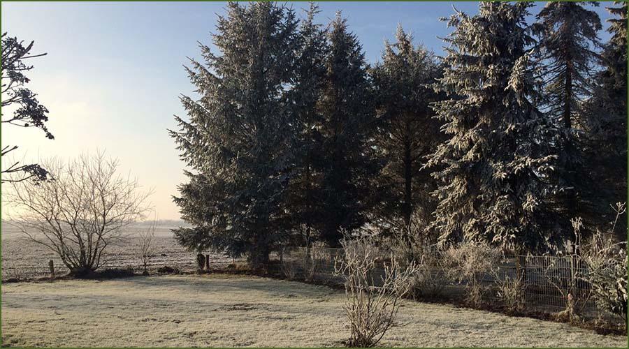 Urlaubseindrücke Haus Friesenglück in Kolkerheide, Nordfriesland - Winter-Gartenansicht